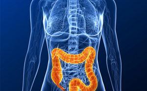Симптомы и лечение колита кишечника у взрослых