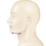 Подчелюстные лимфоузлы: причины воспаления и лечение