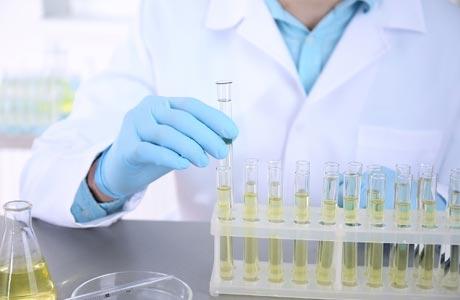 Расшифровка общего анализа крови у женщин таблица